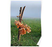 Oak bough Poster