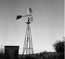 Old Time Windmill Photographic Print