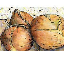 Onions Three Photographic Print