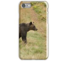 Bear Trails, Knight Inlet iPhone Case/Skin