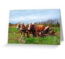 Serious Horse Power Greeting Card