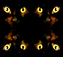 The Cats Eyes Have It by Lisa Taylor