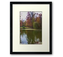 WEEPING WILLOW LAKE Framed Print