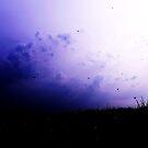 devon sky by Kat Trow