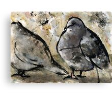 Pigeons #2 Canvas Print