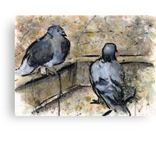 Pigeons #3 Canvas Print