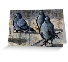 Pigeons #4 Greeting Card