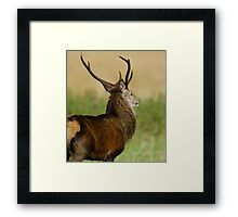 """""""Enemy Approaches"""" Framed Print"""