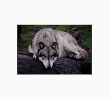A wolf on a wet log Unisex T-Shirt