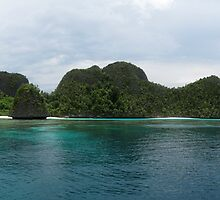 Wayag Inner lagoon by Dr Andy Lewis