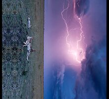 Leopard Lightning by SOIL