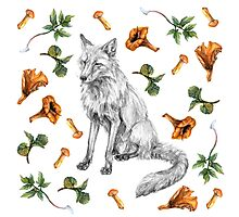 Sitting fox with leaves and mushrooms Photographic Print