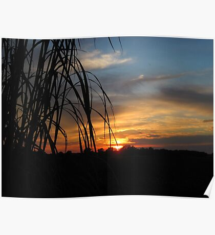 Sunset in Indiana Poster