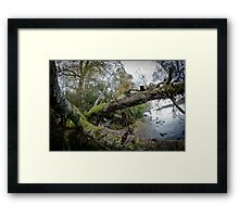 Loch Ness Shoreside Framed Print
