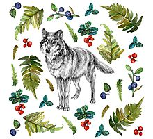 Wolf with fern and berries Photographic Print
