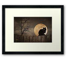 Cat On A Fence Framed Print