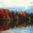 SHAKOPEE Fall Reflections  by Diane Trummer Sullivan
