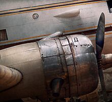 Transportation - Plane - A little rough around the edges by Mike  Savad