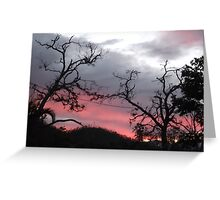 Sunset near Cardwell, North Queensland Greeting Card