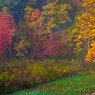 Cades Cove, Rainbow Curtain by photosbyflood