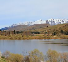 Lake Hayes Nr Queenstown South Island New Zealand by Martin  Brinsley