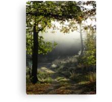 Morning Vision Canvas Print