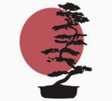 Go Bonsai Now by GunnBranch