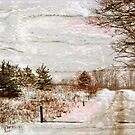 Country Road in Winter with Texture by teresa731