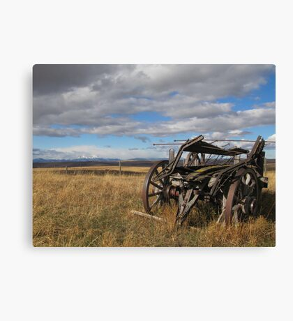 Old Buggy Canvas Print