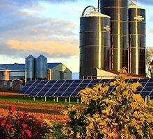 Modern Mennonite Farming by Kelly Chiara
