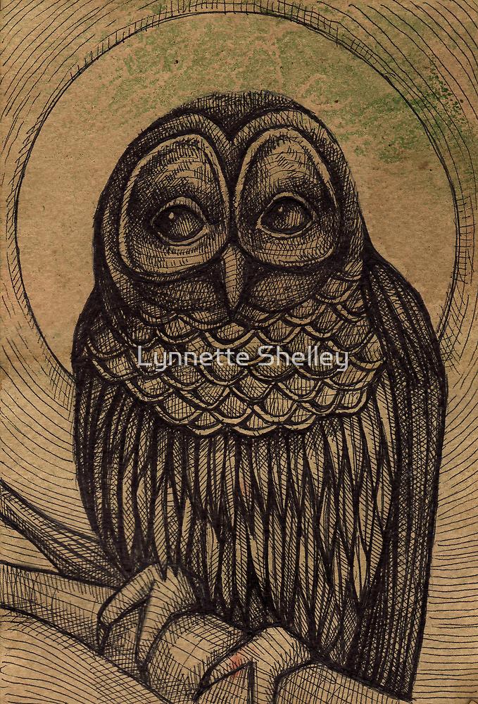 Hoot Owl by Lynnette Shelley
