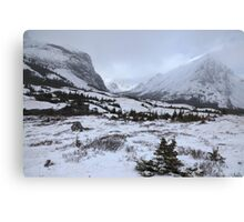 Elbow Pass valley IV Canvas Print