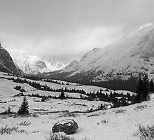Elbow Pass valley V (b&w) by zumi