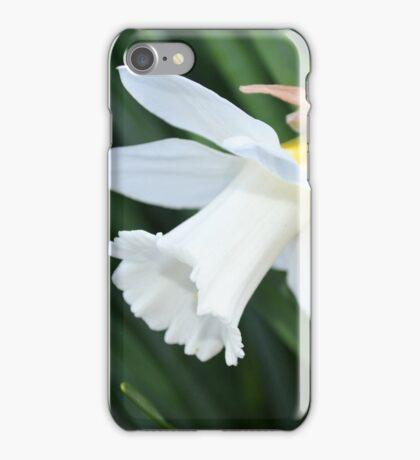 Single White Daffodil iPhone Case/Skin