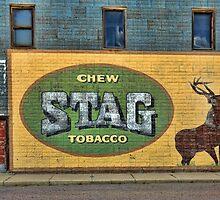 Stag by Brian R. Ewing