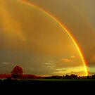 """""""somewhere over a rainboak"""" by snapitnc"""