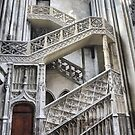 Cathedrale Notre Dame de Rouen (6) The Staircase by Larry Davis