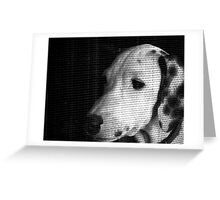 Hope!!! (Twitty The Dalmation 2) Greeting Card