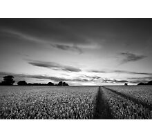 Bejewelled Sky BW Photographic Print