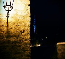 Lighting the Dark by tutulele