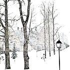 White as White. by tutulele