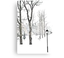 White as White. Canvas Print