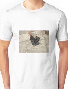 Black Cock Unisex T-Shirt