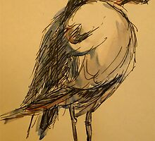 Winter seagull: pen and wash by Elizabeth Moore Golding