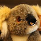 a koala doll by andre joceline