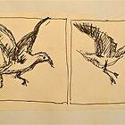 Four flying Seagulls: pen sketch. by Elizabeth Moore Golding