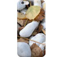 Stones & Leaves iPhone Case/Skin