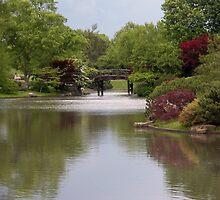 Shimmering Water in a Japanese Garden by Paula Betz