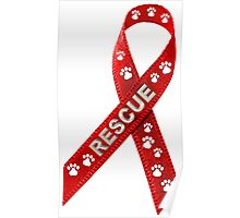 RESCUE Dogs and Cats! Poster