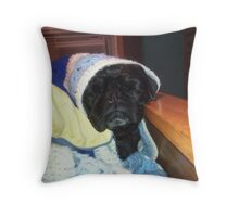 Black Pug Oliver on the Bed Throw Pillow